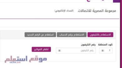 الاستعلام عن فاتورة التليفون ( المصرية للاتصالات ) 2020